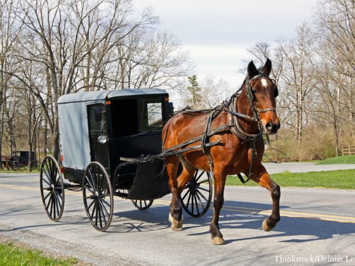 Visiting Pennsylvania Dutch country is a great thing to when you stay at the Sayre Mansion.