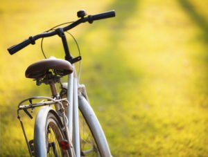 Fall Cycling