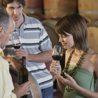 Couple sampling wines at Vynecrest Winery
